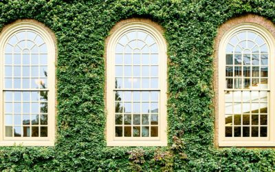 Smart Money: The Real Money Being Made From Harvard Is In Real Estate